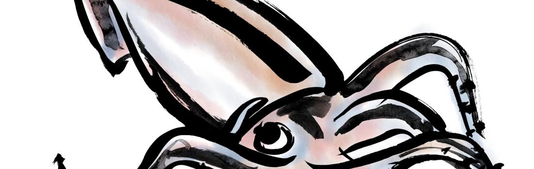 生イカの墨絵イラスト