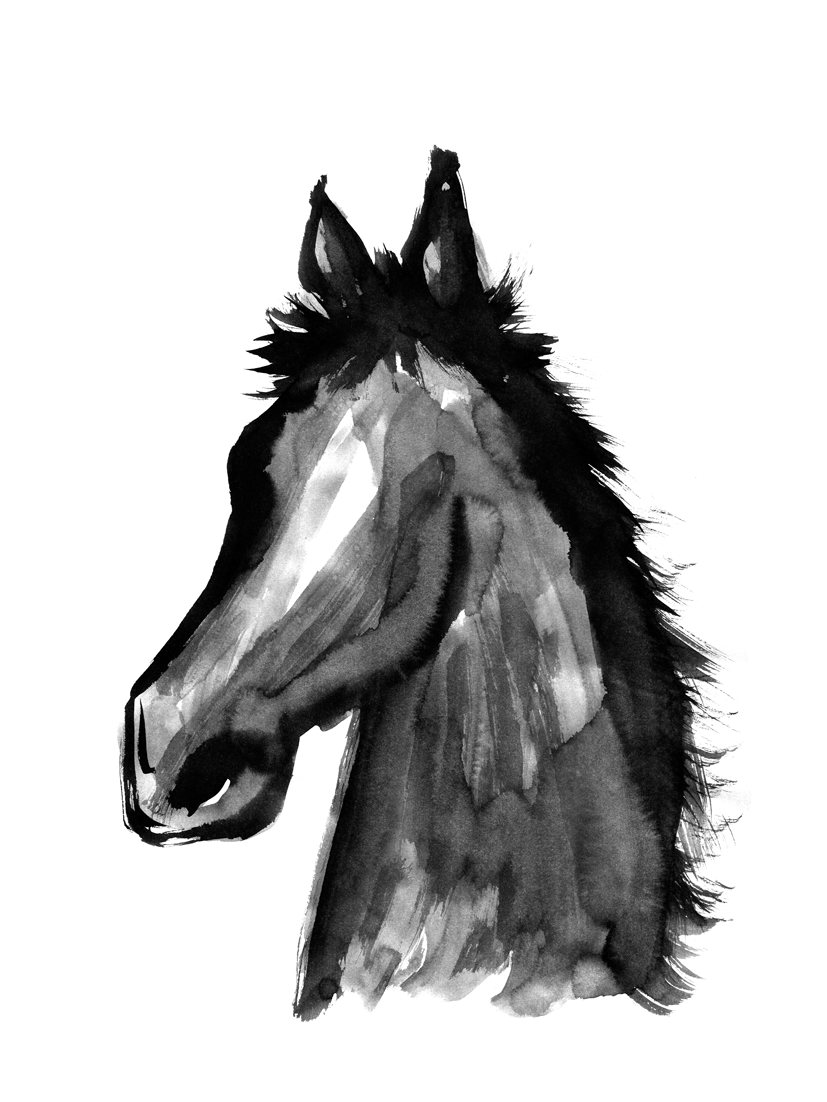 馬の顔墨絵