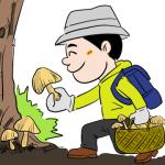 秋のキノコ狩りイラスト