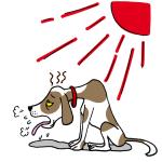 犬の熱中症注意イラスト