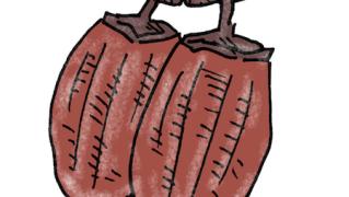干し柿の無料イラスト
