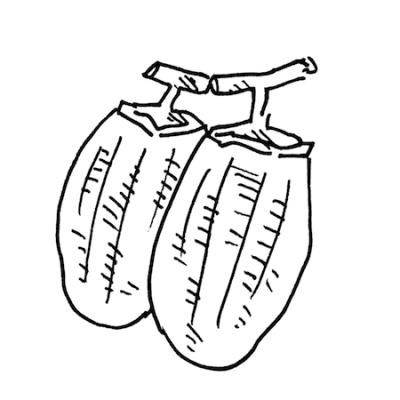 干し柿の無料モノクロイラスト