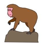 岩山に登る猿イラスト年賀状素材