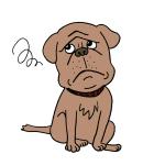 困った顔悩む顔の犬イラスト