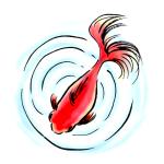 波紋と金魚墨絵イラスト無料