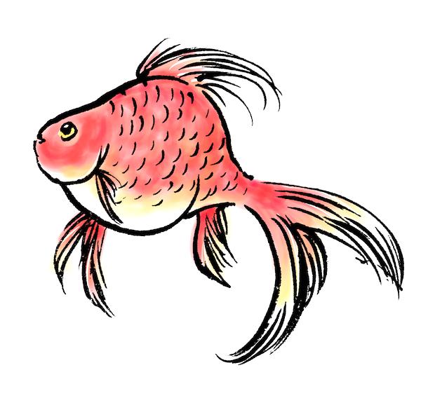 泳ぐ金魚墨絵イラスト無料