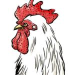 鶏墨絵リアルな横顔年賀状素材酉年